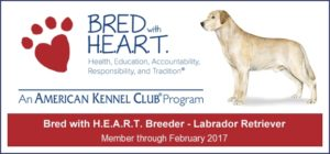 AKC Bred with H.E.A.R.T. Program