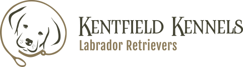 kentfield_kennels-logo