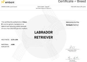 Embark-Certificate-of-Breed-for-Maya-B-OK