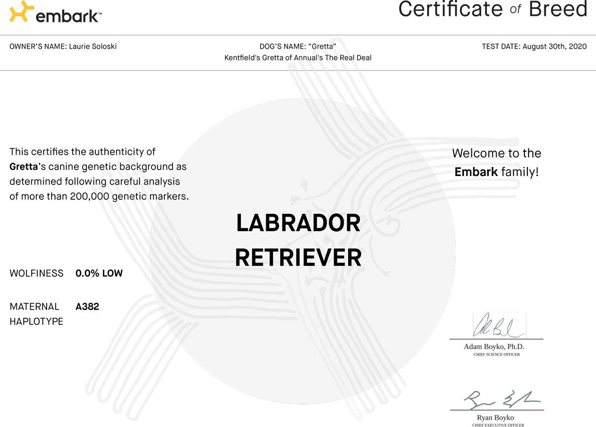 gretta-Embark-Certificate