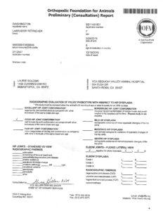 OFA Preliminary Report Kentfield's Georga Washington