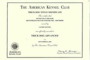 Kentfield's Hattie Foster Advanced Trick Dog Certificates (1)2
