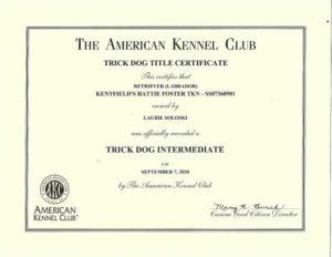 Kentfield's Hattie Foster Intermediate Trick Dog Certificates (2)