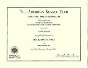 Kentfield's Hattie Foster Novice Trick Dog Certificates (3)