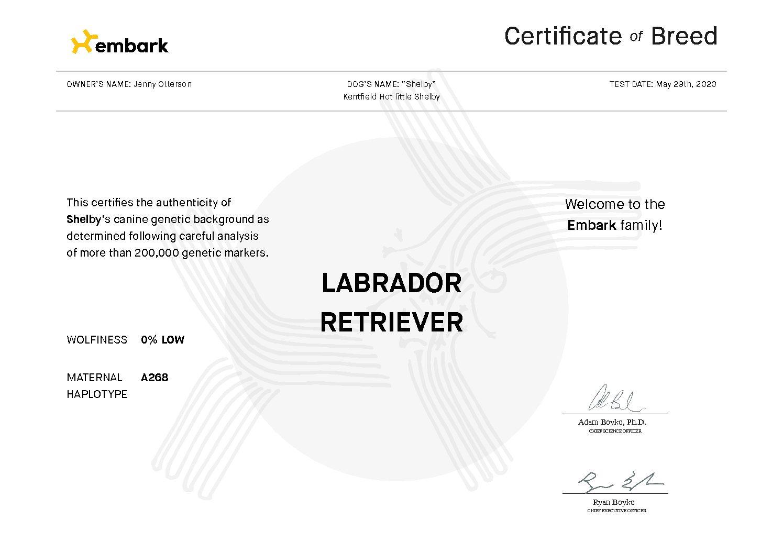 EMbark Certificate Shelby